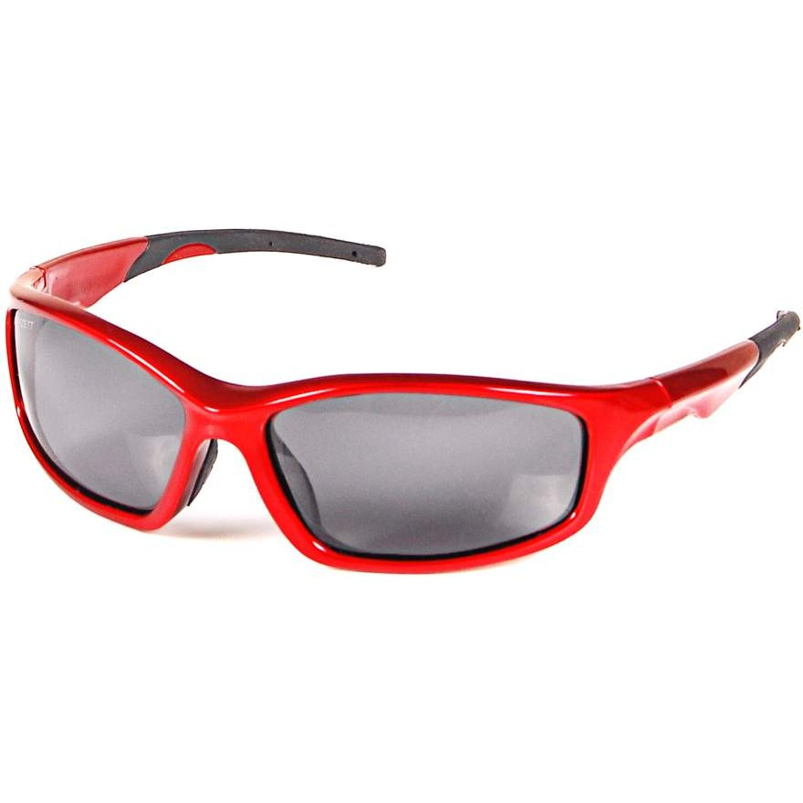 DAM Effzett Polarized Glasses Black And Red