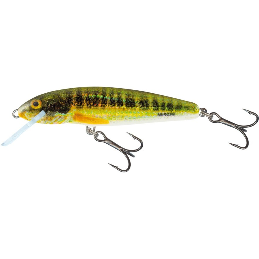 Salmo Minnow Floating 6cm