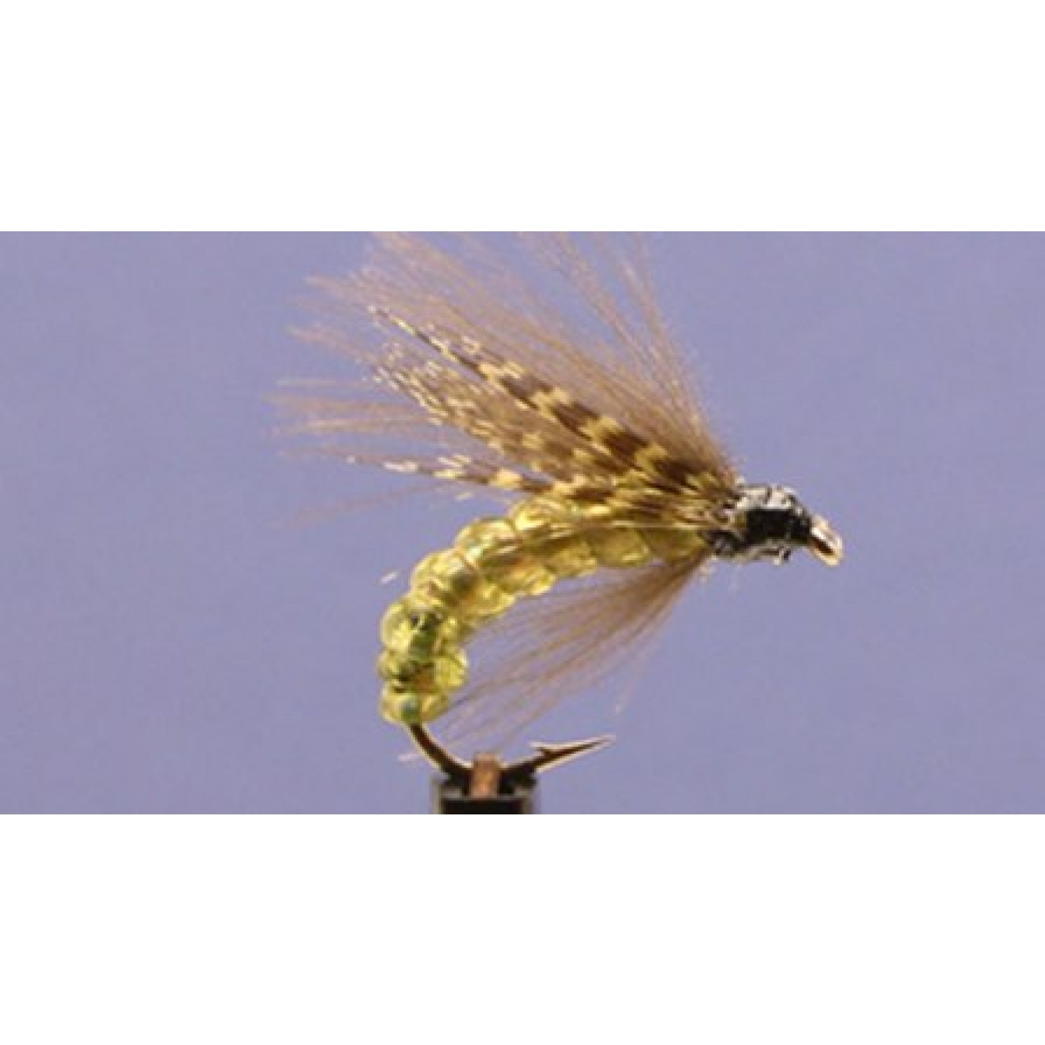 Europe - Olive CDC Caddis Emerger