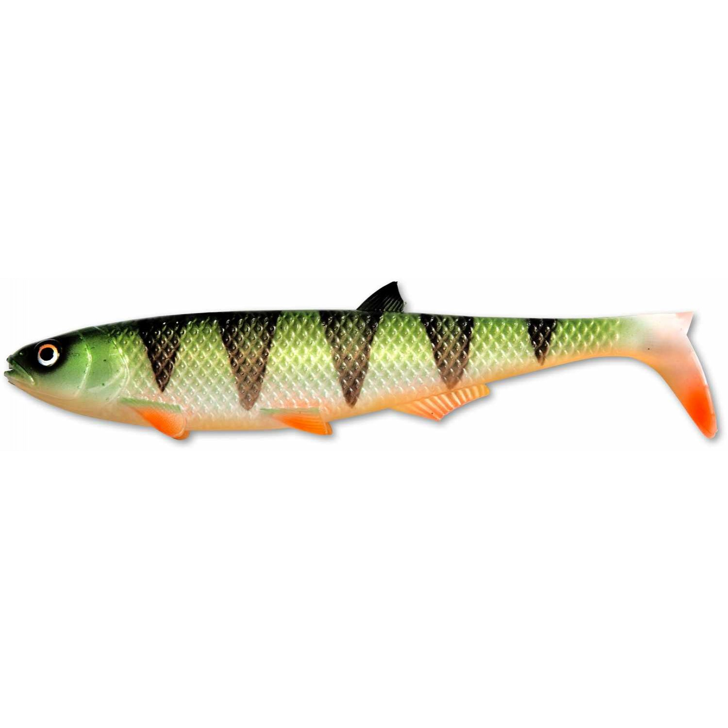 Quantum Specialist Yolo Pike Shad
